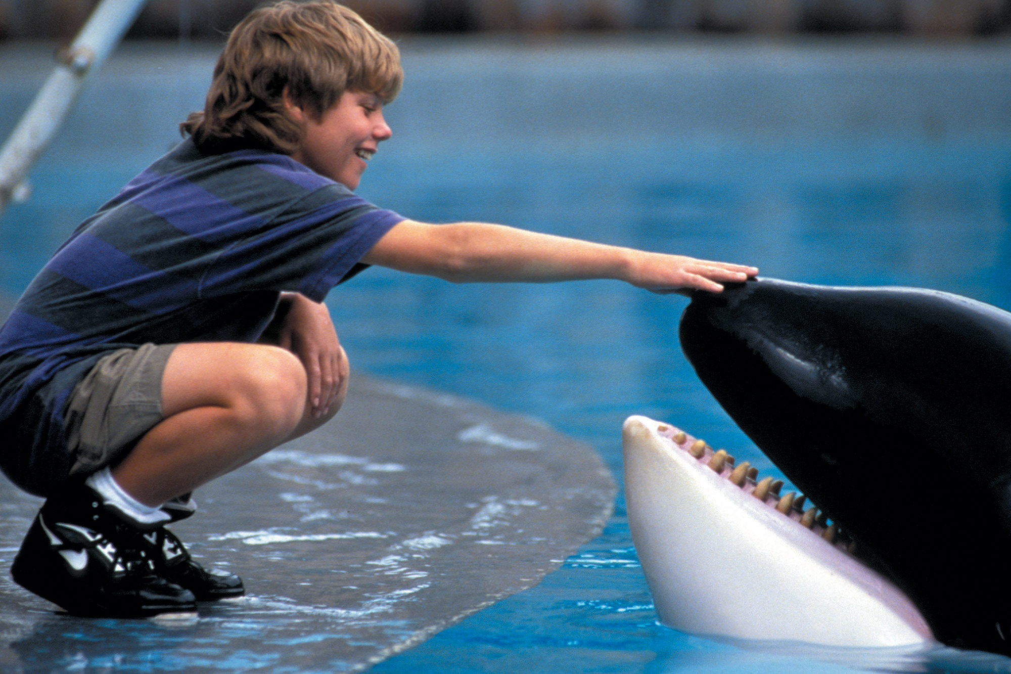 REVIEW: Free Willy | The Viewer's Commentary