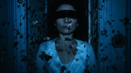 The Duke of Burgundy - Butterflies and blindfold