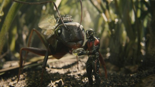 Ant-Man - Antony, Paul Rudd